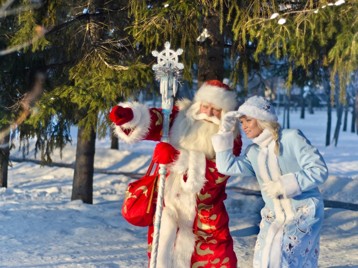 Интерактивное новогоднее видео-представление от деда Мороза …