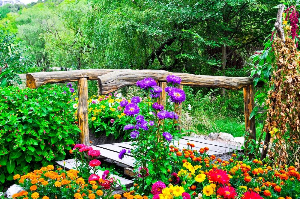 Как выбрать и разместить балконный ящик для цветов