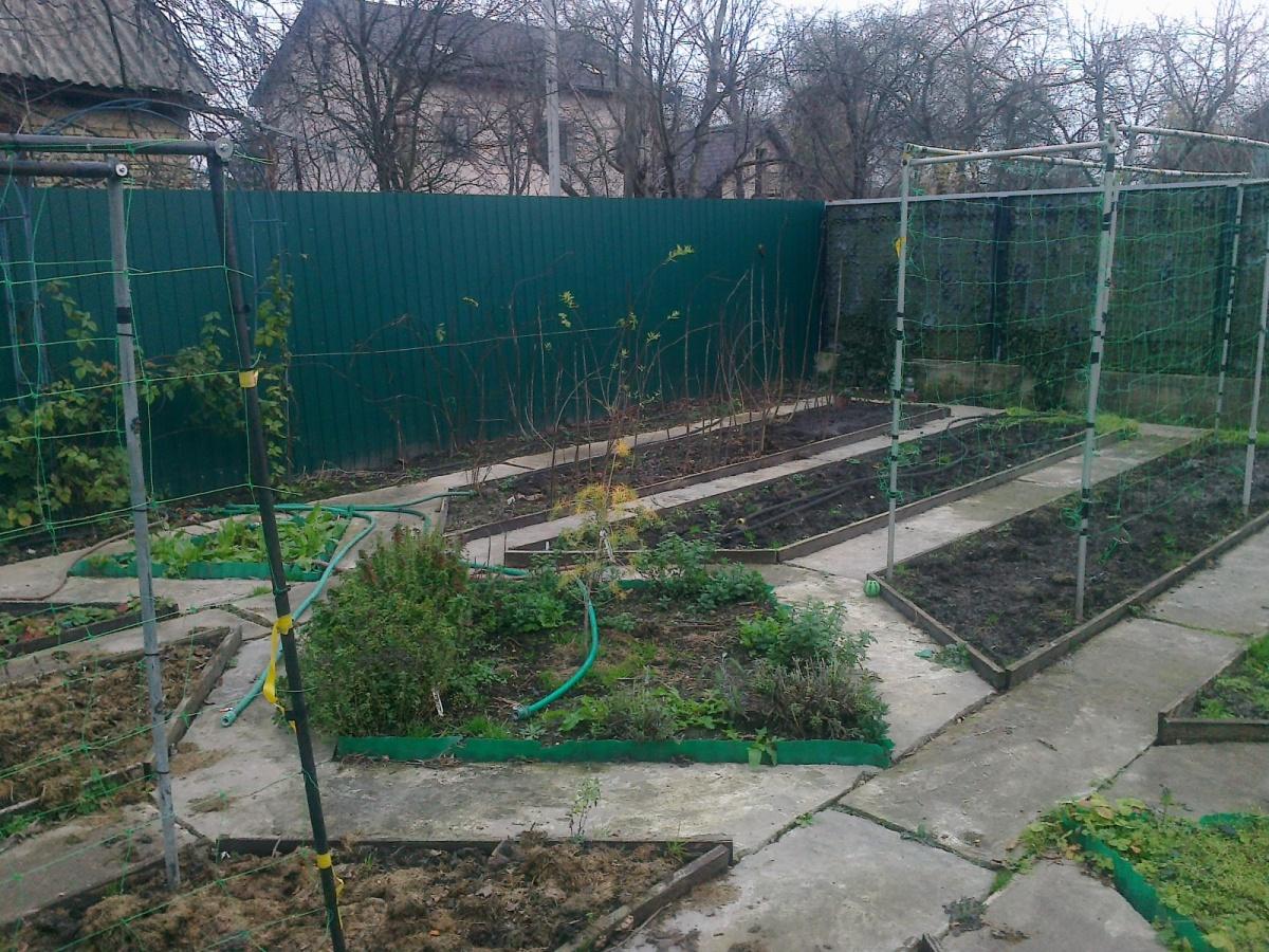 Ухоженный со вкусом оформленный сад