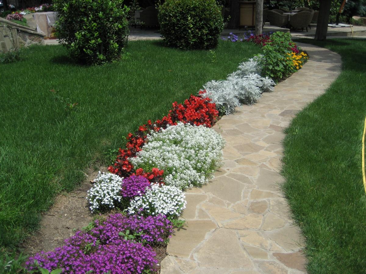 Цветочное оформление газона