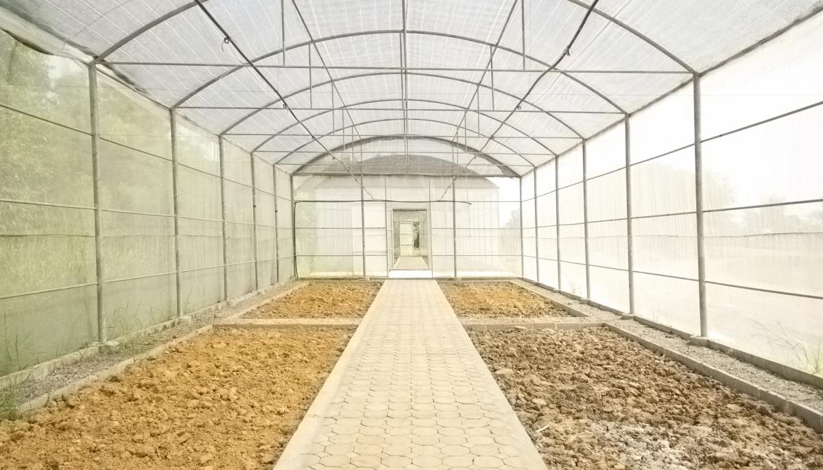 Важный вопрос - подготовка грунта в теплице