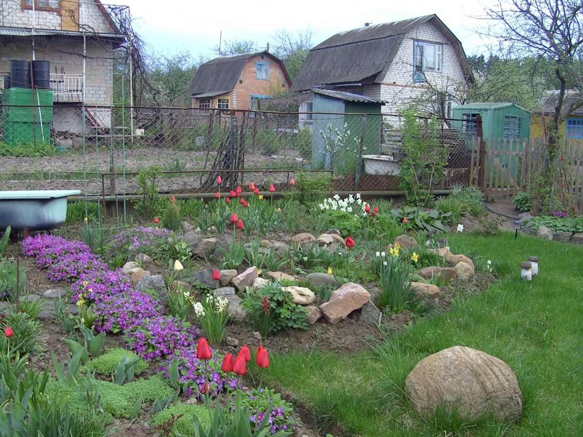 Сад своими руками моя любимая дача фото