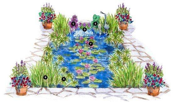План водного сада!