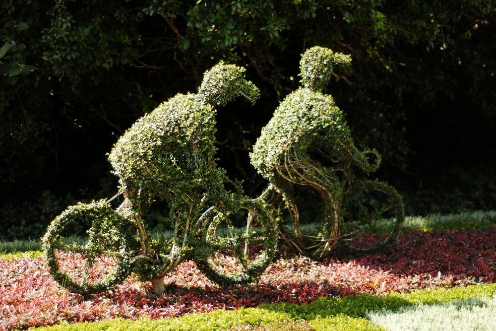 Клумба - велосипедисты