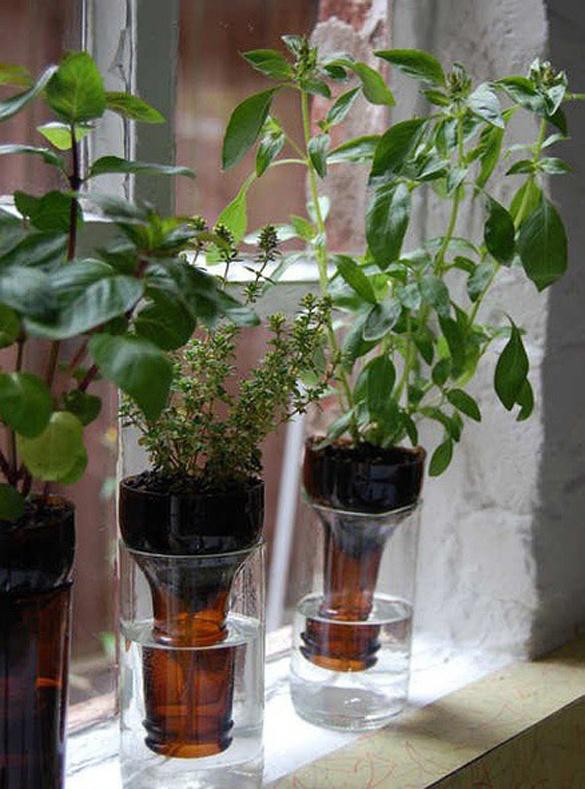 10 идей использования бутылок в саду / Журнал садовода annaKn / 7dach.ru