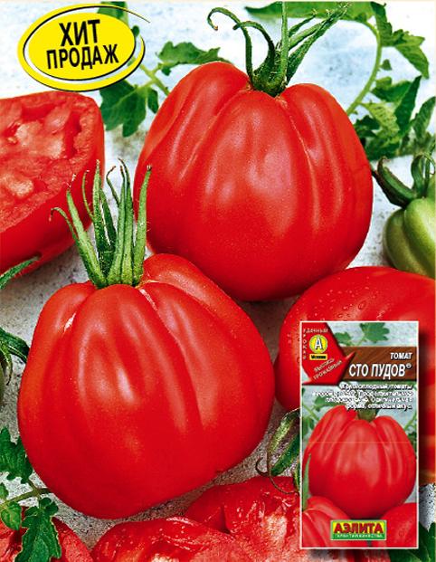 это томаты сто пудов отзывы с фото растение каскадной