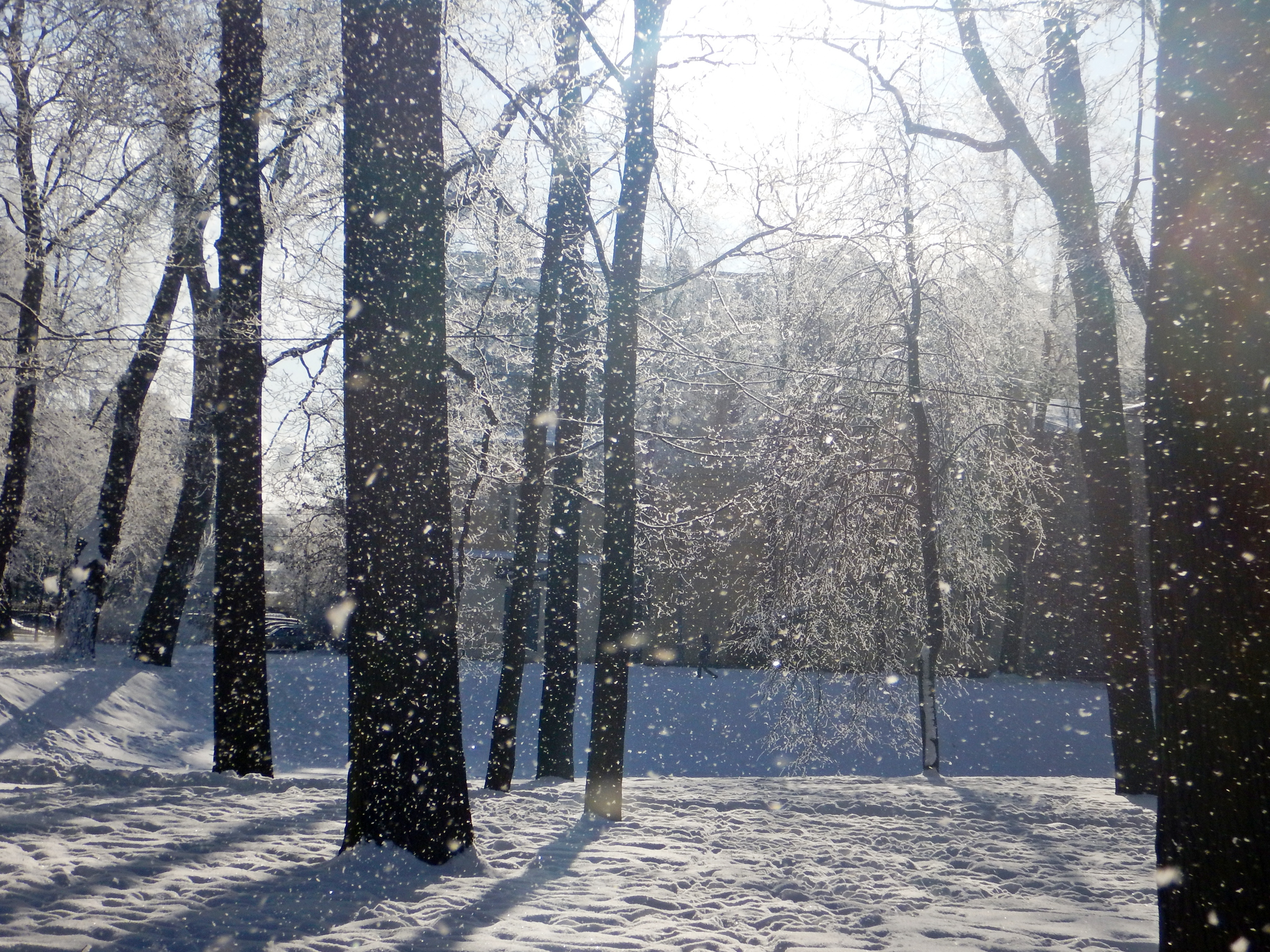 как сделать фото с падающим снегом герт