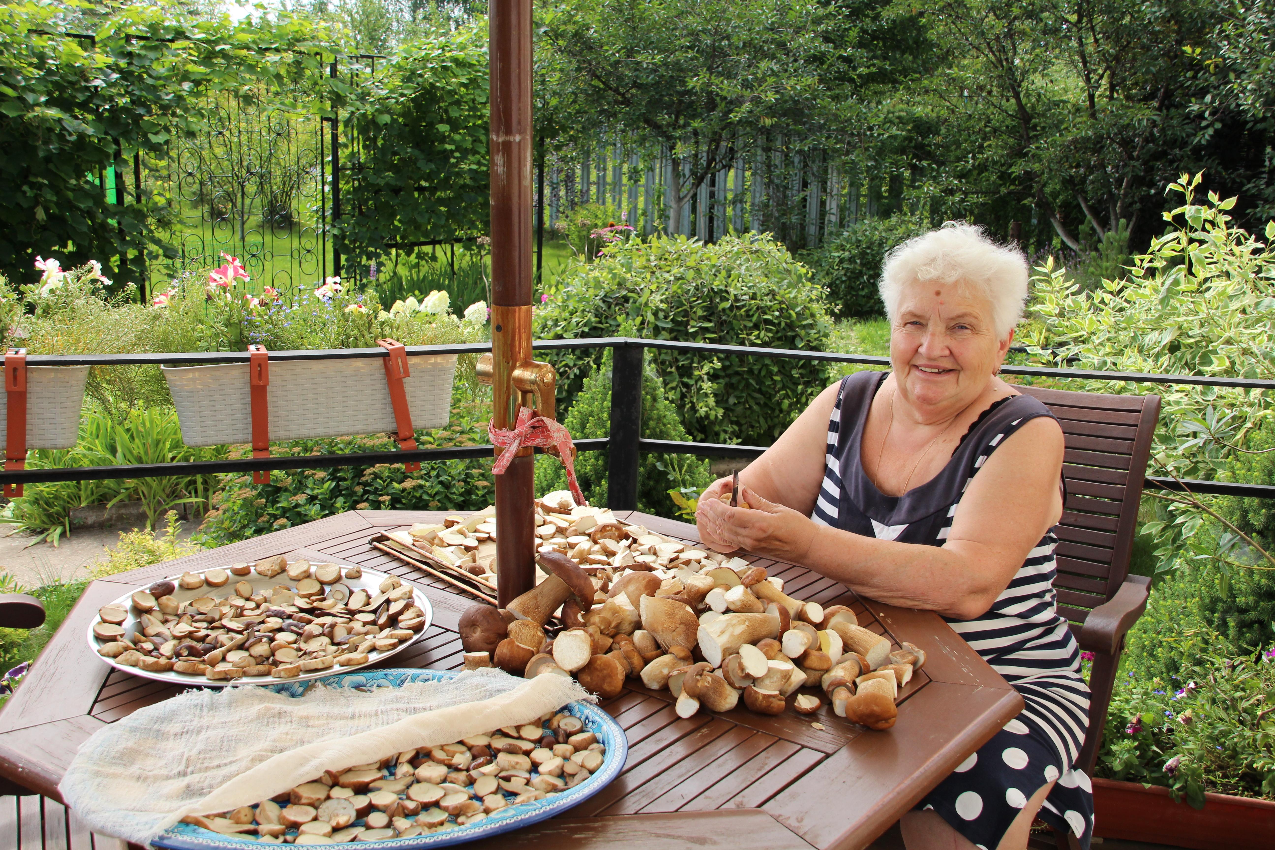 Бабушки на даче картинки