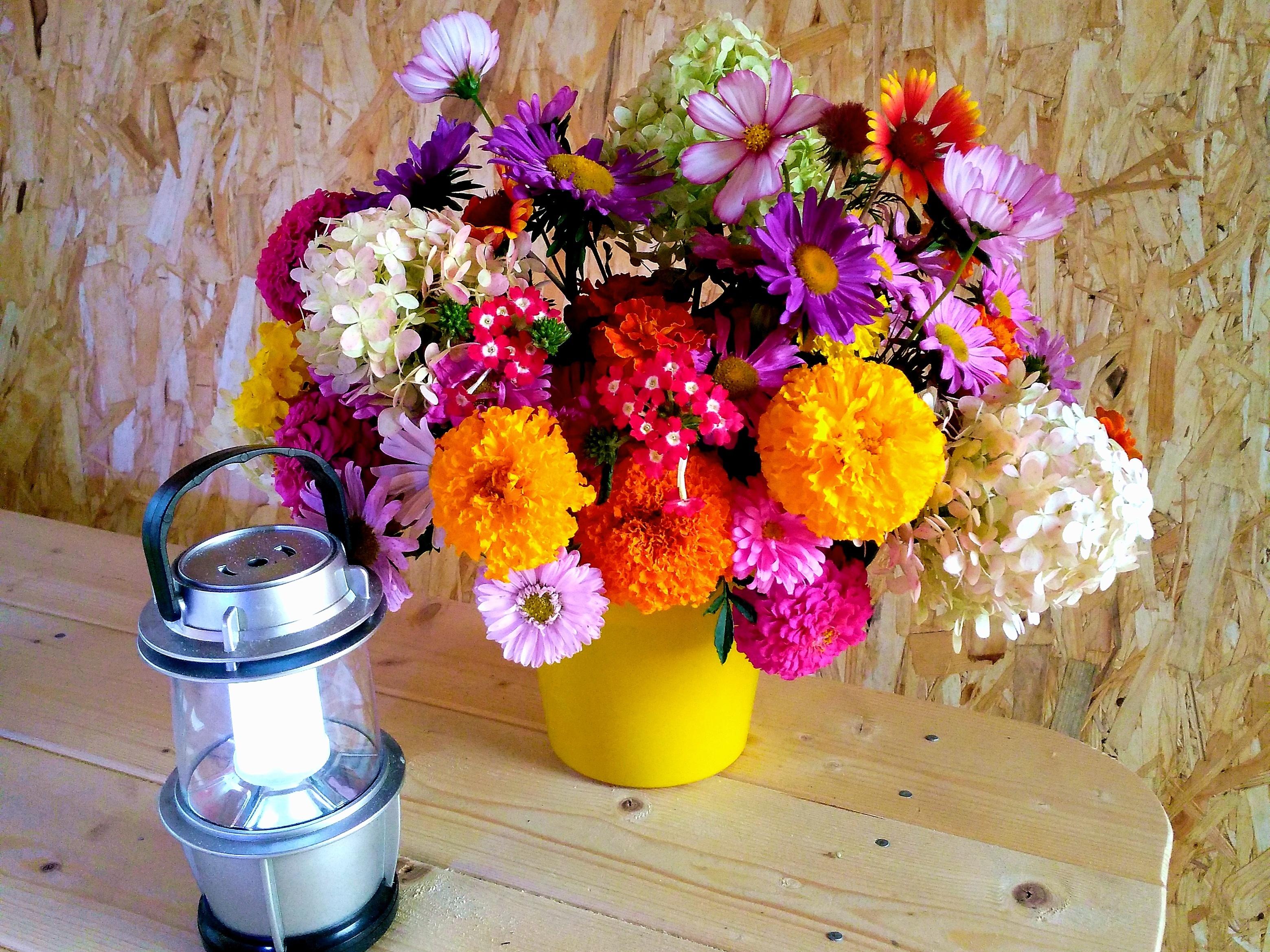 Букет из дачных цветов фото